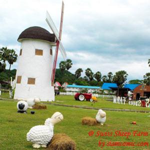 นั่งรถม้าชมฟาร์ม ให้อาหารน้องแกะ แวะป้อนนมวัวน้อย @Swiss Sheep Farm